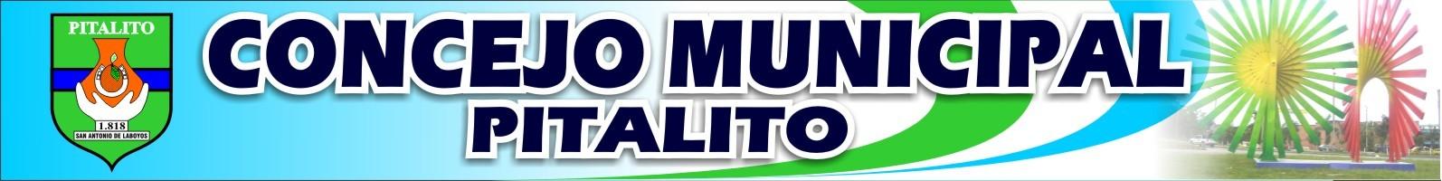 Concejo-Municipal-Pitalito